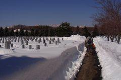 今年はやっぱり雪が少ない(^^).jpg