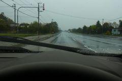 今日は雨….jpg
