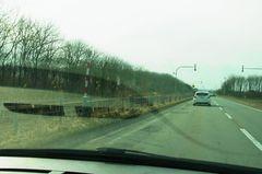 国道274号線…鳥を観察.jpg