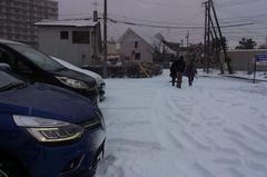 帰ってきたら雪が….jpg