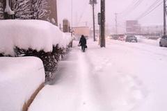 雪が膝まである歩道と渋滞.jpg