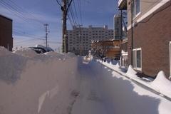 12月で、この雪山の高さ….jpg